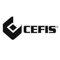 CEFIS - Imballi standard e speciali, e per merci pericolose